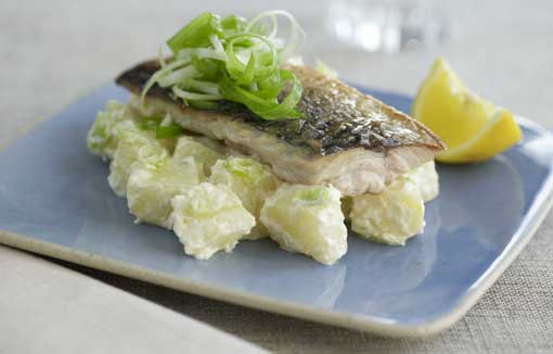 Rooster Salad with Grilled Mackerel and Horseradish