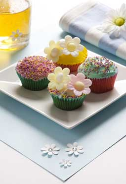 Dr Oetker Gluten Free Cupcakes