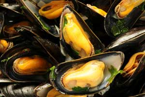 Moules Mariniere